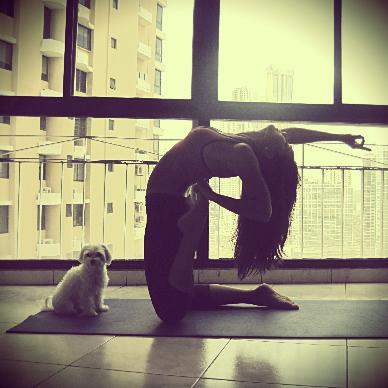 yoga poses  camel pose