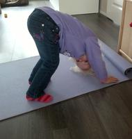 Downward Facing Dog Pose